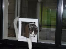 dinning amusing doggy door for glass sliding doors doggy door for patio glass