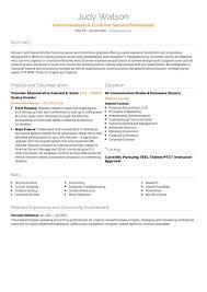 customer service summary for resumes customer service cv examples templates visualcv