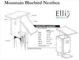 beautiful bluebird house plans one board usgs using sparrow resistant hole