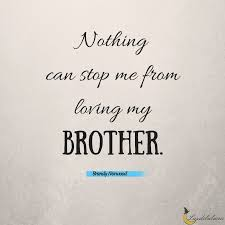 Brother Quotes Delectable 48 Awesome Brother Quotes Luzdelaluna