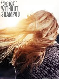 how to wash your hair without shoo