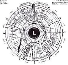 Dr Bernard Jensen Iridology Chart What Is Iridology Needbalance