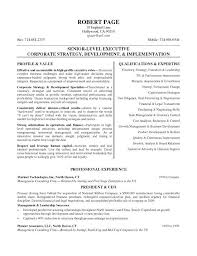 Ceo Resume Template Simple Ceo Resume Templates Word Letsdeliverco