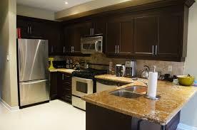 Rustoleum Cabinet Transformations Review Unique Rustoleum Kitchen Cabinet Kit Reviews Kitchen Cabinets