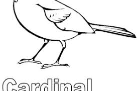 Small Picture Ohio State Bird Coloring Page