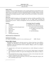 Basic Finance Manager Resume