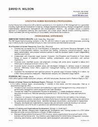 Resume Summary Statement Example Awesome Fresh Resume Opening