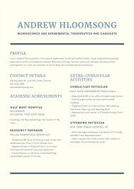 Cv Guidelines 18 Professional Cv Templates And Examples Writing Tips