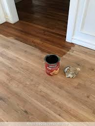 remove urine odor from wood floor unique how to clean dog urine from