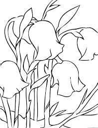 Small Picture Spring Flowers Coloring Pages Handipoints
