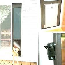 slidg dog door in glass pet canberra s sert s dog door in glass