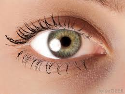 all natural s that are free of allergens and chemicals may benefit people with dry or flaky eyelids