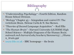 the human brain presentation 24
