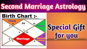 Arjun Kapoor Birth Chart Second Marriage In Astrology By Vedic Raj Astrology Multiple Marriage Special Gift For You