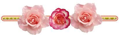 Resultado de imagen para guia flores
