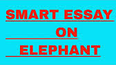 an essay on elephant for kids in english language  2 57