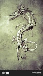 Sketch Of Tattoo Art Big Medieval Dragon Fantasy Concept Image