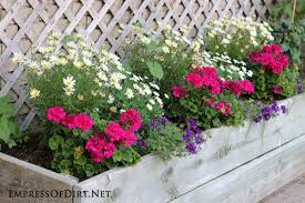 Great Daisies And Pink Geraniums In Raised Wooden Planter | 21 Gorgeous Flower  Planter Ideas