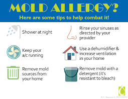 Mold Allergies: When pollen is gone and symptoms drag on
