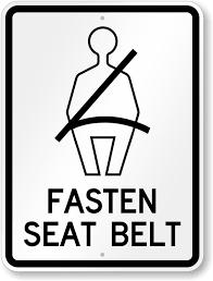 Image result for seat belt