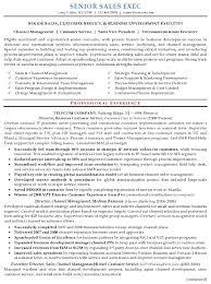 Executive Resume Format 13 Sales Template Sample 16 Senior Career