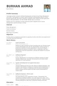 Lead Consultant Resume samples