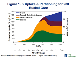 Understanding Nutrient Requirements For High Yielding Corn