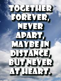 Quotes About Never Or Forever 37 Quotes