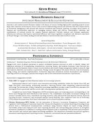 Business Analyst Resume Sample Mesmerizing Sample Management Business Analyst Resume Resume Pro