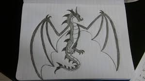 Dragon And Phoenix Drawings Equestria Amino