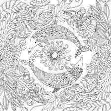 Dolphin Dream Designs Coloring Book Amazon Com Follow Your Dreams Adult Coloring Book 31