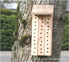 swiss bee house plans inspirational breathtaking bee house plans best ideas interior tridium