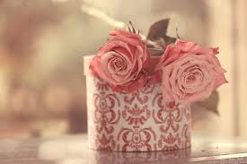Image result for vintage roses pictures
