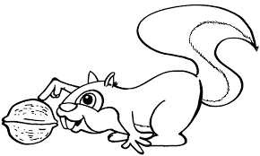Cute Squirrel Colouring Pages Page 3 Clip Art Library