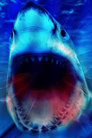 shark wallpaper 3d. Perfect Shark Preview U0026 Save Wallpaper With Shark 3d I