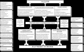 Учебное пособие Организация и нормирование труда ru Задачи научные основы направления организации и нормирования труда