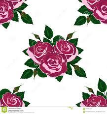 Naadloze Behang Roze Rozen Vector Illustratie Illustratie Bestaande