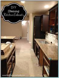 Staining Kitchen Cabinets Darker Staining Kitchen Cabinets Dark Torahenfamiliacom Staining
