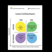 Bazi Profile Strength Chart Career Profiling Report