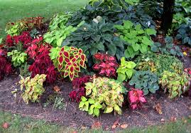 Small Picture Shade Garden Design Garden Design Ideas