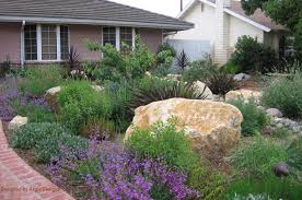 Small Picture Image result for modern australian native gardens Australian