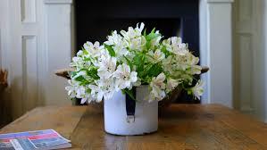 free stock photos of flower vase · pexels