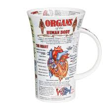 Organs In The Human Body Dunoon Organs Of The Human Body Glencoe Shape Mug