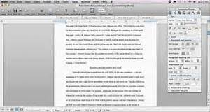essay about chicago what are your career aspirations essay essay about chicago
