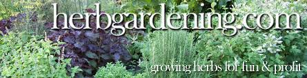 how to grow a herb garden. HerbGardening.com | How To Grow Herbs A Herb Garden