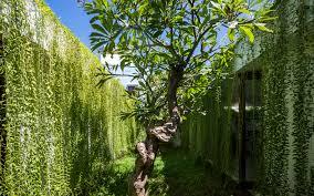 Small Picture Vietnam Inhabitat Green Design Innovation Architecture