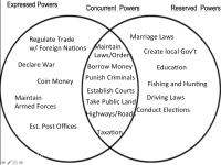 Magna Carta And Bill Of Rights Comparison Chart Compare