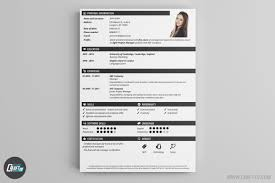 Professional Cv Template Online Free Online Cv Builder With My