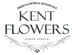 Kent Flowers – Design My Web – Website in Progress