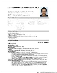 Professional Resume Template Download Free Cv Template Pdf